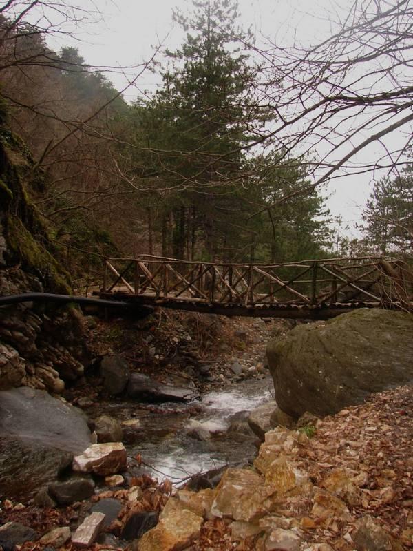 Ahşap Köprü [Vildan Sönmez]