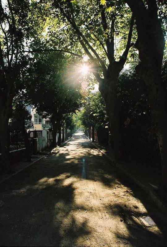 Işık [Özlem Kaya]