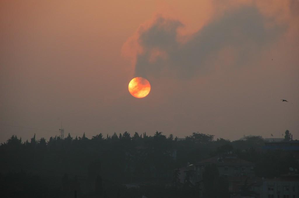 Sabah Güneşi [Burhan Erdem]