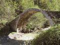 Köprü [Kadriye Çinkaya]